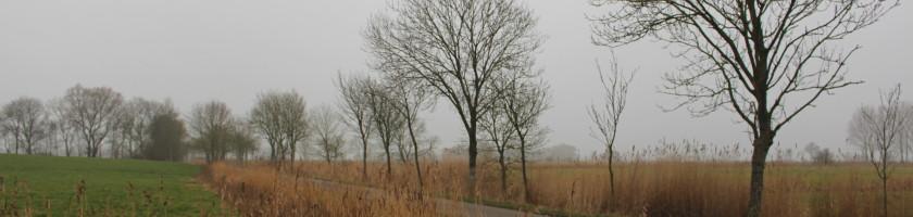 Landschaft im Wangerland